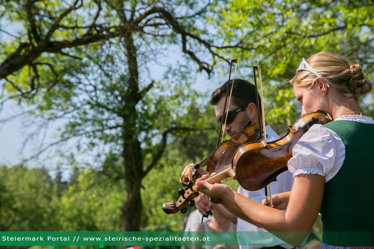Geige Musiker