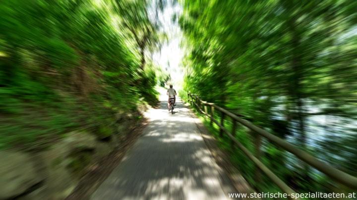 Radfahren Steiermark