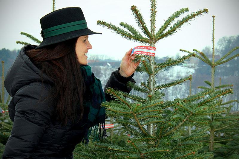 christbaum aus der heimat tipps zum weihnachtsbaumkauf. Black Bedroom Furniture Sets. Home Design Ideas