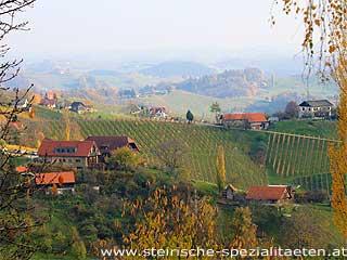Wohnraum Steiermark