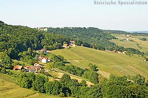 Südoststeiermark - Kren Anbaugebiet