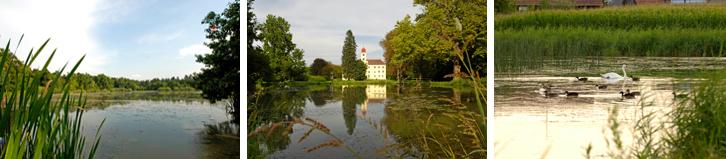 Steirische Teichland Fotos
