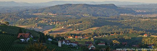 Sausaler Weinstrasse Aussicht