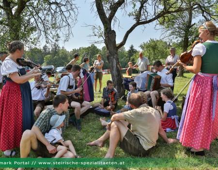 Steirischer Geigentag: Musikanten treffen sich zum Geigen