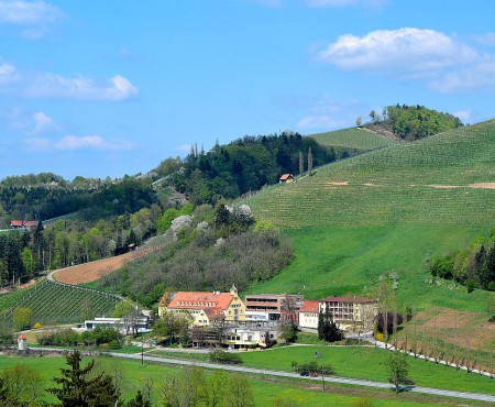 Neues Bildungszentrum für Obst- und Weinbau in der Fachschule Silberberg