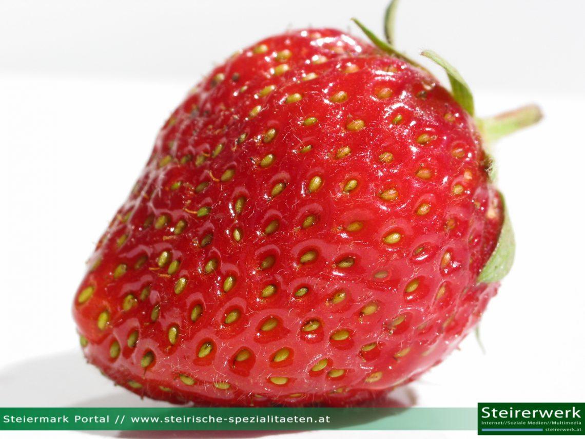 Erdbeersaison in der Steiermark: Frische Erdbeeren aus der Region