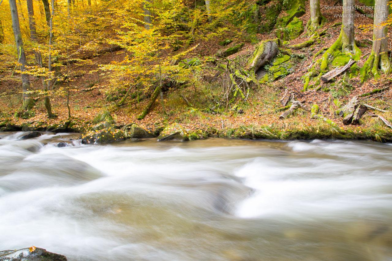 Fluss Deutschlandsberg Klause Herbst
