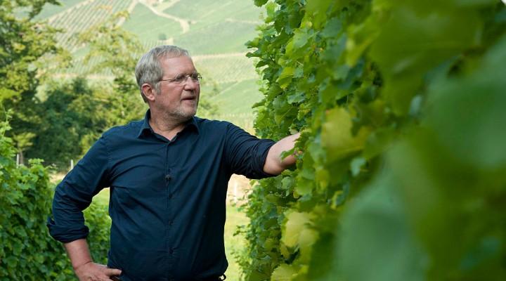 Streifzug durch die österreichische Winzerlandschaft mit Harald Krassnitzer
