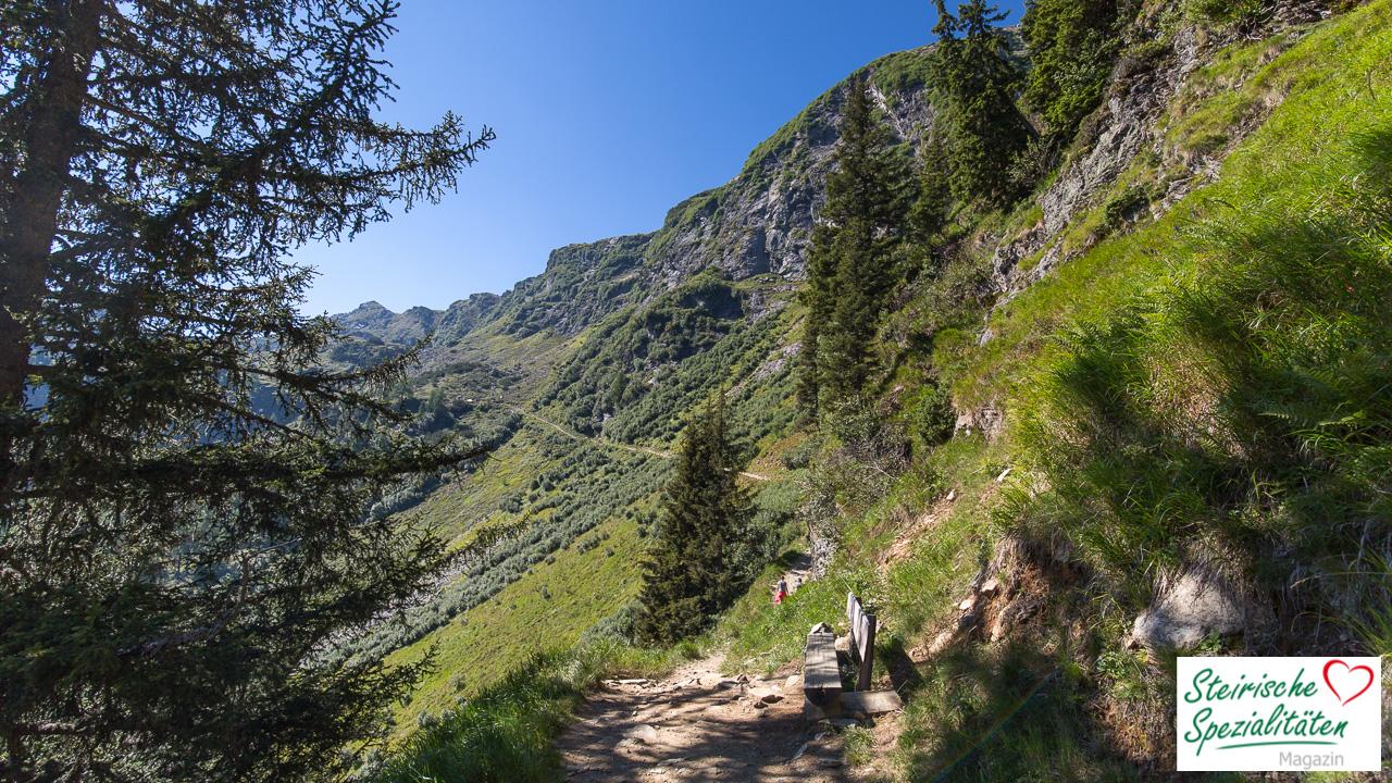 Wanderweg Reiteralm Spiegelsee