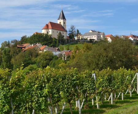 Weinweg der Sinne – Weinwanderweg in der Steiermark