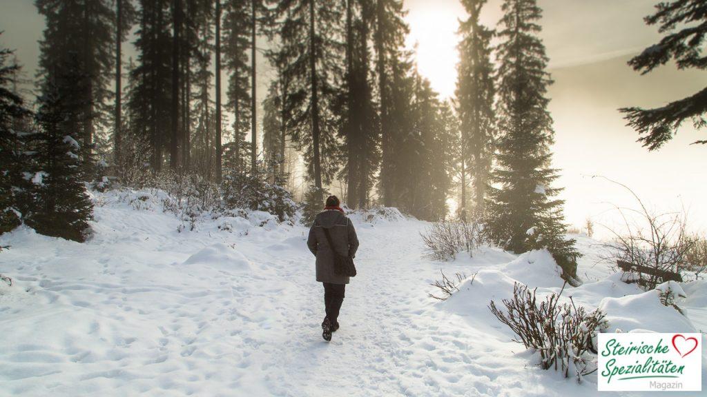 Wandern Ödensee Winter