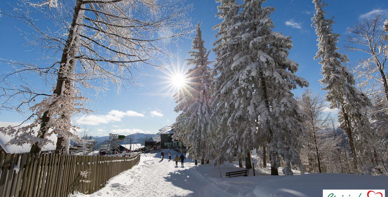 Winterspaß auf der Mariazeller Bürgeralpe