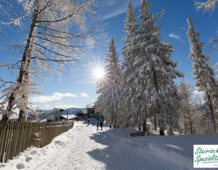 Winterwanderung auf der Mariazeller Bürgeralpe