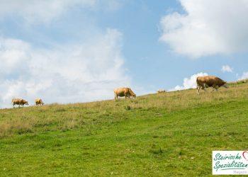 Almo Rindfleisch aus der Steiermark