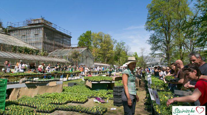 Pflanzen-Raritätenmarkt im Botanischen Garten