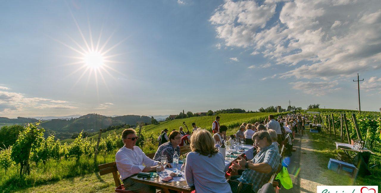 Steirische Weinstraßen im grünen Herzen Österreichs