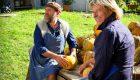 Traubenkernöl, Walnussöl, Leindotteröl – Spezialöle sorgen für kulinarische Abwechslung