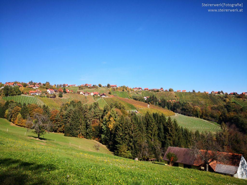 Weinbau in Hochgrail im Herbst