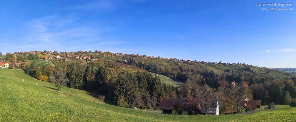 Weingärten von Hochgrail Panorama