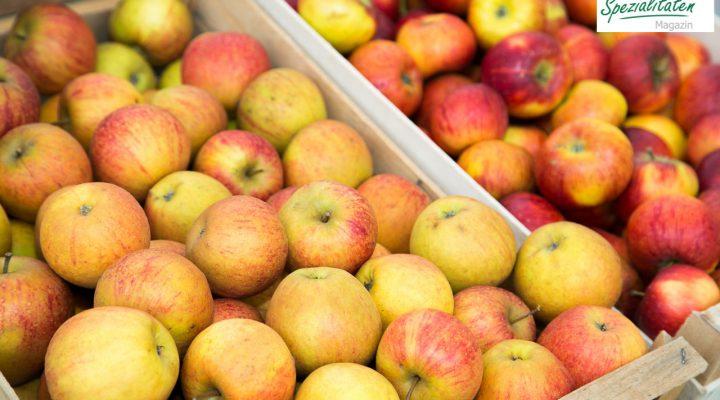 Steirische Apfelsorten: 10 beliebte Klassiker für den Apfelgenuss