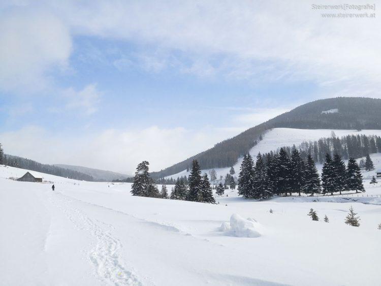 Winterwandern Teichalm