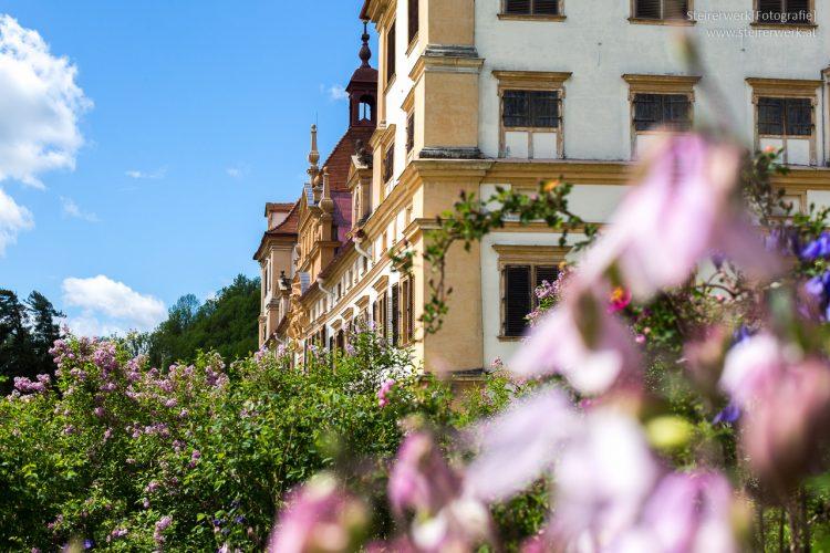 Rosenhügel Schlosspark Graz